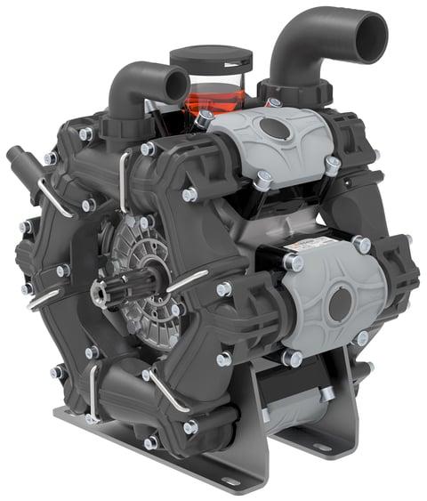 BPS 300