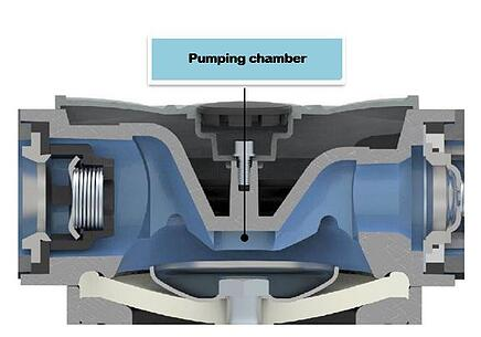 COMPONENTS OF A DIAPHRAGM PUMP _Pumping chamber